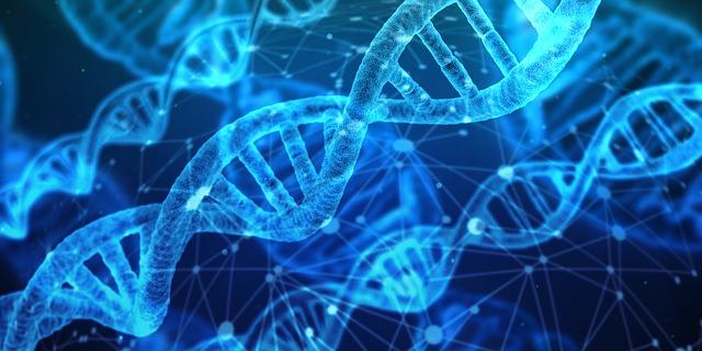An amendment to the HIPAA Privacy Rule deals with genetic information.